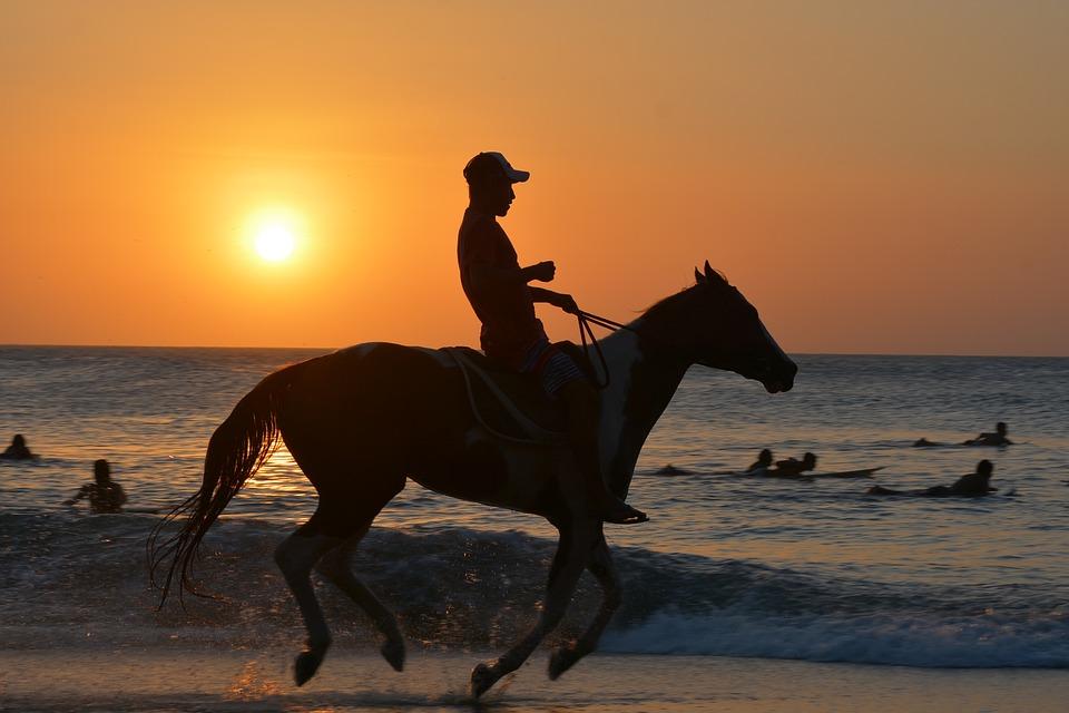 Quand acheter un cheval ?